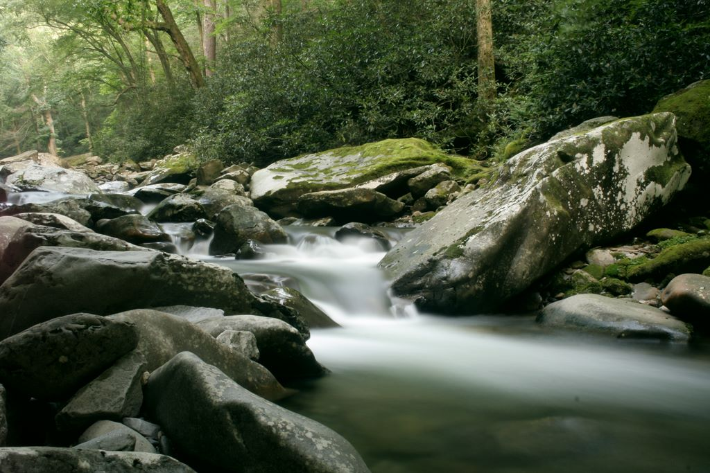 Walker Camp Prong in the Smoky Mountains National Park - photograph copyright John Hudson Smith V