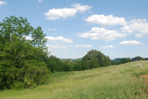 Land in Majestic Meadows - Boyds Creek TN area real estate and homes for sale