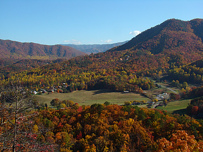 Fall Leaves In Wears Valley - Photo taken from Teaberry Mountain