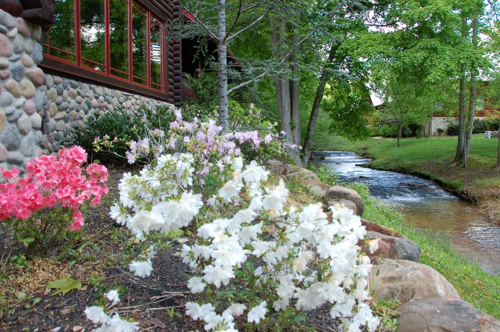 Flowers during May at 2609 Cedar Falls Way - Smoky Mountain Cabin on Creek in Pigeon Forge