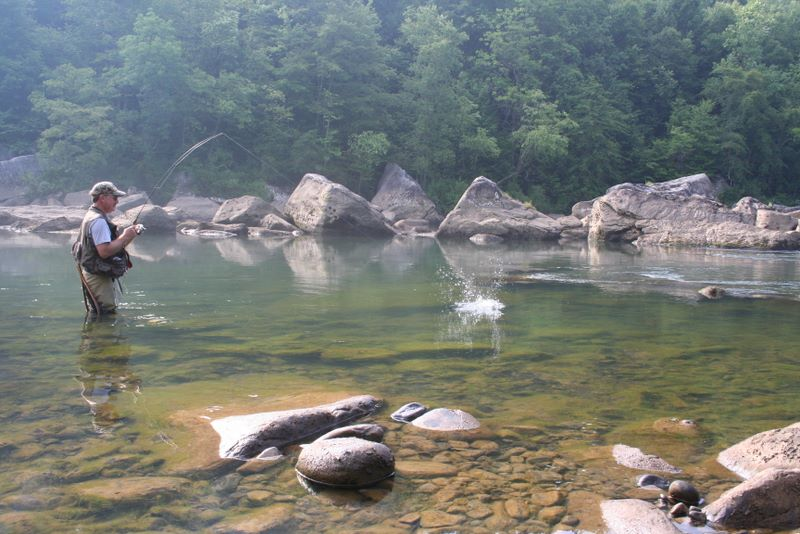 Trout fishing in the great smoky mountains national park for River trout fishing