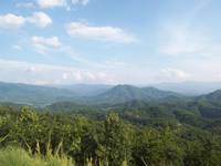 View From The Homestead In Wears Valley. Development with lot prices ranging from about $50,000 to $400,000