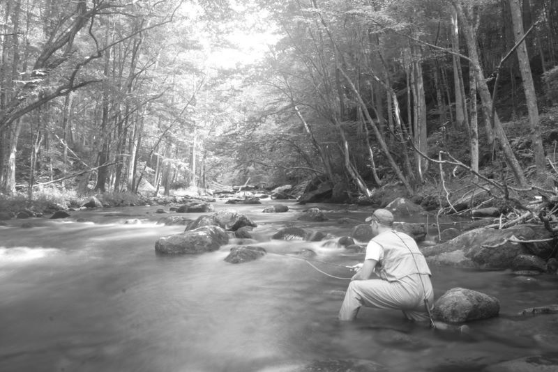 Jay Fradd fly fishing in the Smoky Mountains on the Little River