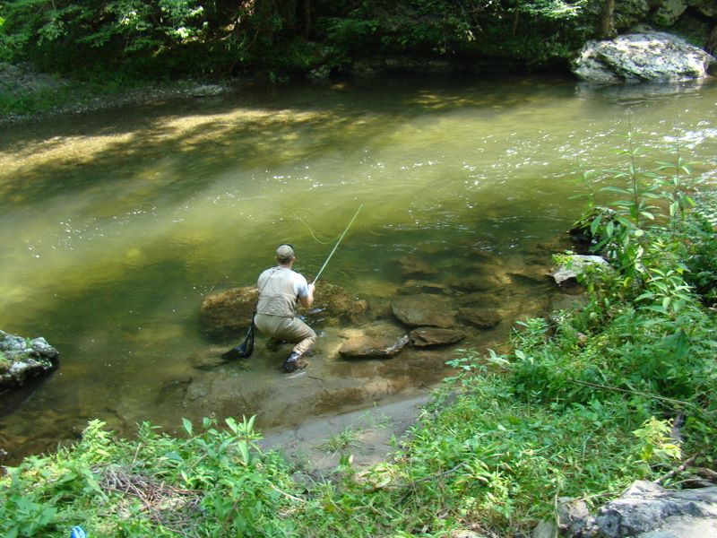 Jay Fradd fly fishing the Little River in the Smoky Mountains