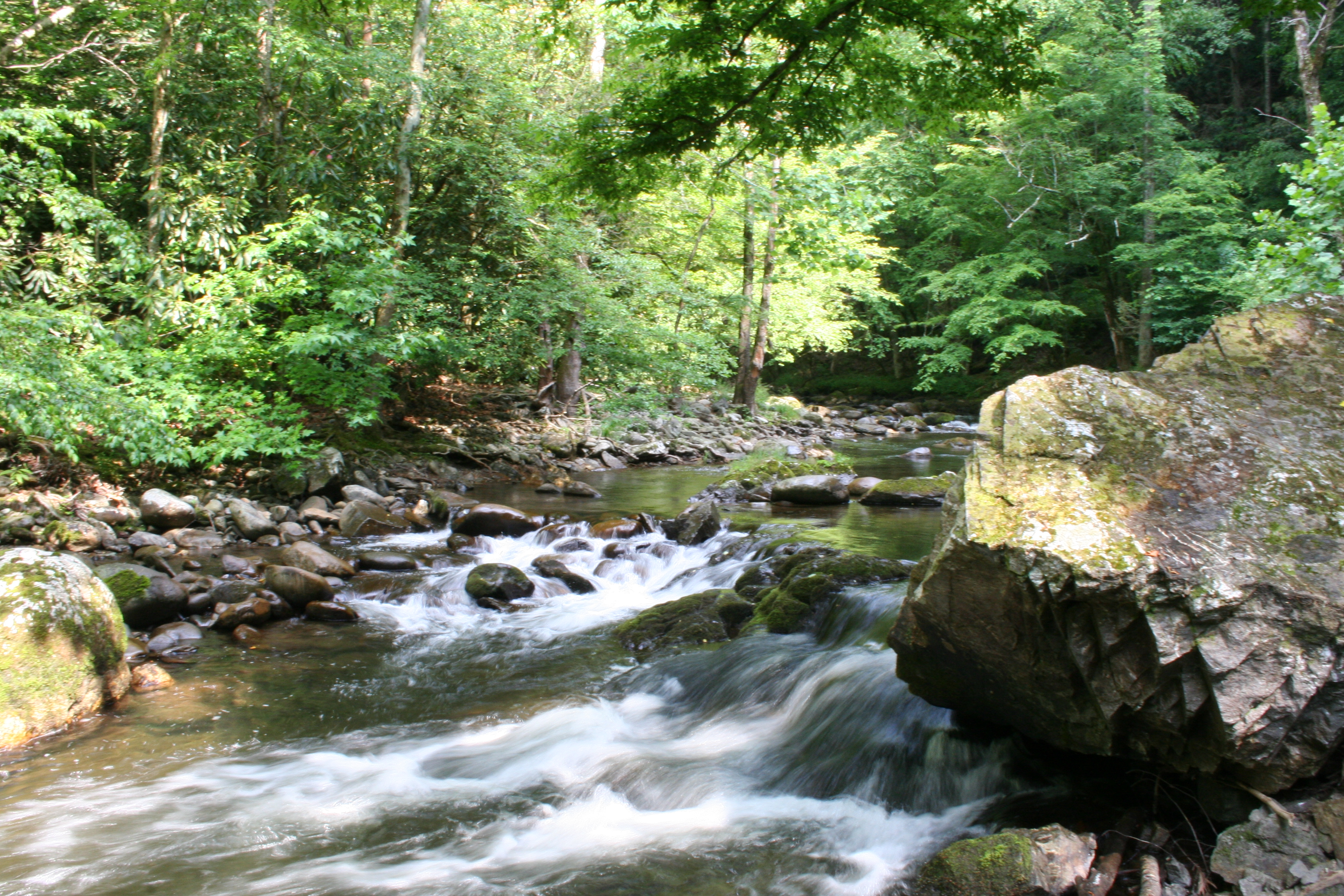 Superb Smoky Mountain Lots Land And Acreage For Sale In Sevier Home Interior And Landscaping Oversignezvosmurscom
